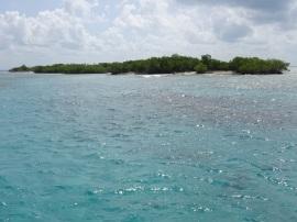 Isla de las iguanas